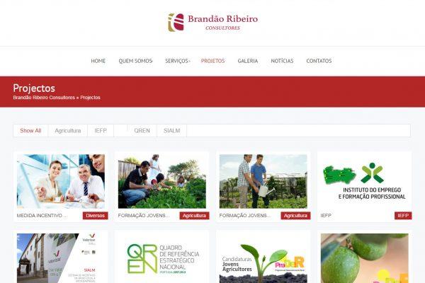 Desenvolvimento de site para Empresas Brandão Ribeiro Consultores (3)